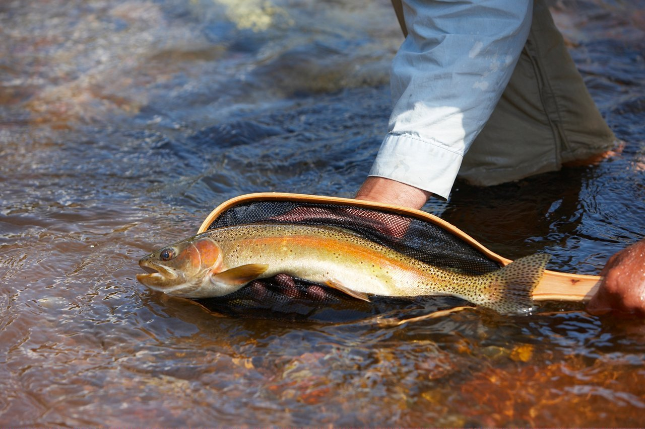 Fishing and soaking are complementary activities in Glenwood Springs